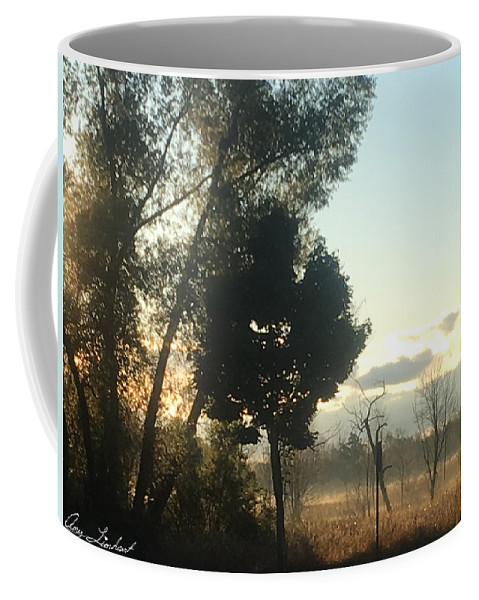 Mist Coffee Mug featuring the photograph Misty Morning by Amy Lionheart