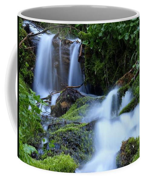 Water Coffee Mug featuring the photograph Misty Waters by DeeLon Merritt