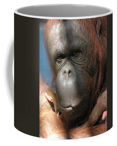 Mother Coffee Mug featuring the photograph Mom Protection by Diane Greco-Lesser