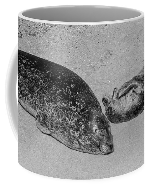 Momma And Baby Coffee Mug featuring the photograph Momma And Baby Black And White by Susan McMenamin