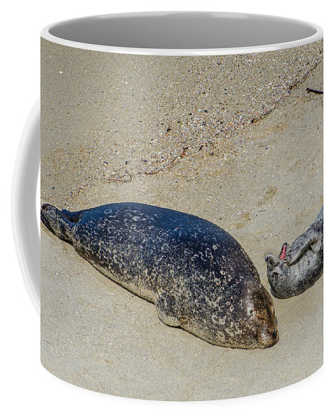 Momma And Pup Coffee Mug featuring the photograph Momma And Pup by Susan McMenamin