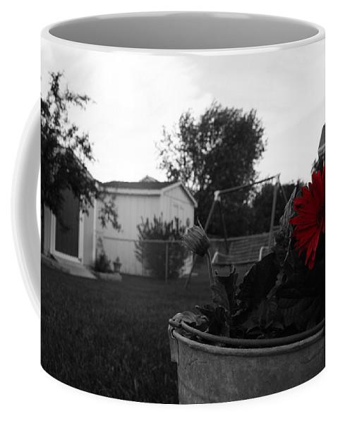 Backyard Coffee Mug featuring the photograph Mom's Backyard by Dylan Punke