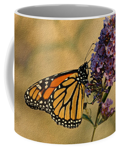 Butterfly Coffee Mug featuring the photograph Monarch Butterfly by Sandy Keeton