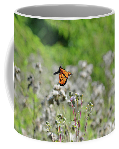 Butterfly Coffee Mug featuring the photograph Monarch In Flight by Barbara Treaster