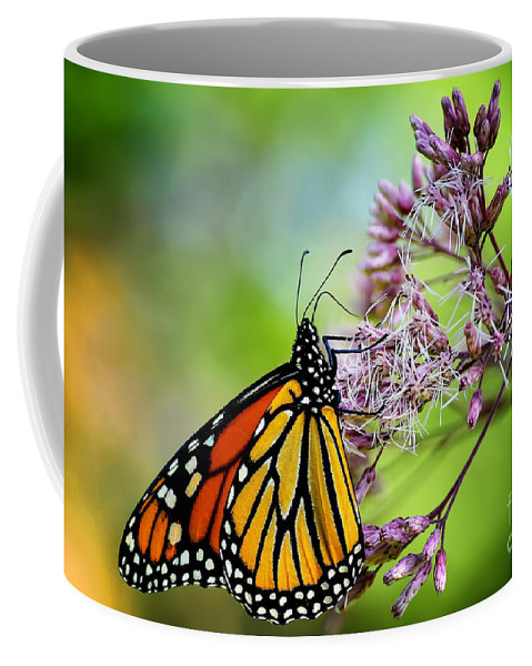 Monarch Coffee Mug featuring the photograph Monarch by Lois Bryan