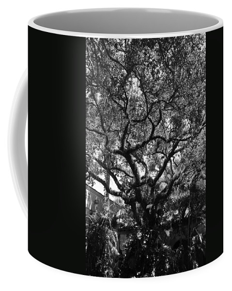 Black And White Coffee Mug featuring the photograph Monastery Tree by Rob Hans