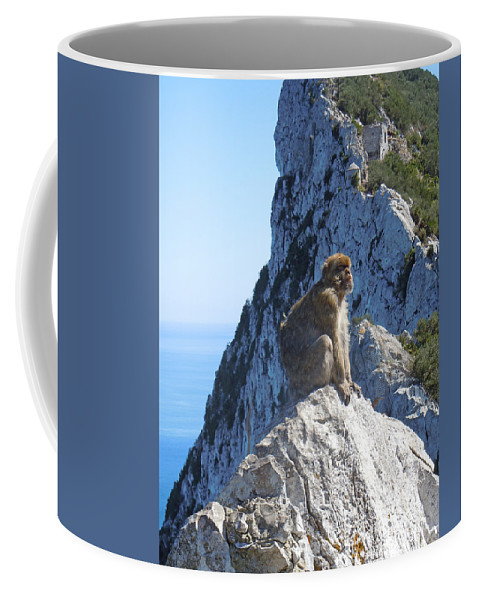 Europe Coffee Mug featuring the photograph Monkey In Gibraltar by Heather Coen