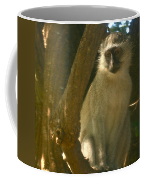 Karen Zuk Rosenblatt Art And Photography Coffee Mug featuring the photograph Monkey In The Tree by Karen Zuk Rosenblatt