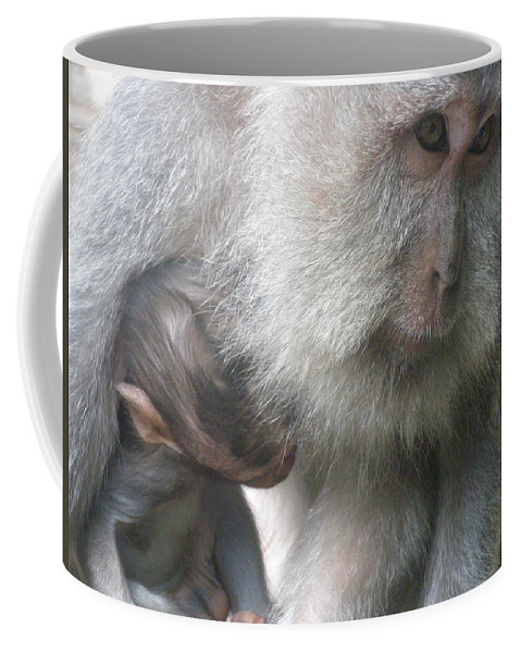 Bali Coffee Mug featuring the photograph Monkey Mother 3 by Mark Sellers