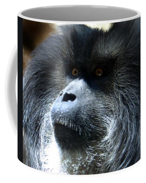 Monkey Coffee Mug featuring the photograph Monkey Stare by Anthony Jones