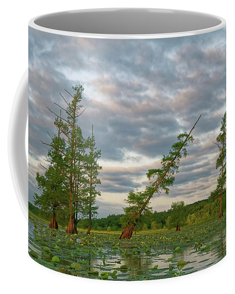 2016 Coffee Mug featuring the photograph Monopoly Marsh by Robert Charity