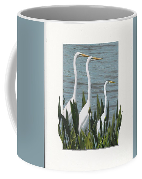Coffee Mug featuring the photograph Montage With 3 Great White Egrets by Sandy Gorton Houseman