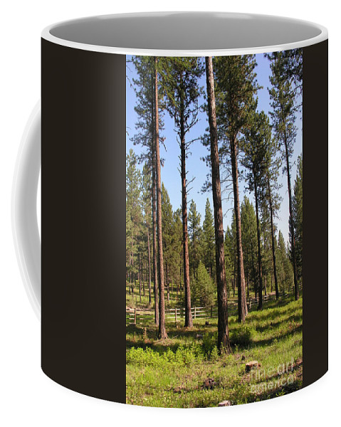 Montana Coffee Mug featuring the photograph Montana Country by Diane Greco-Lesser