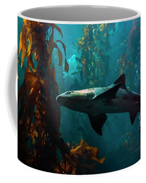 Monterey Coffee Mug featuring the photograph Monterey Depths by Greg Reed