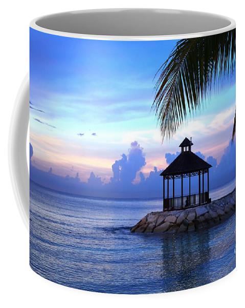 Decor Coffee Mug featuring the photograph Moody Blues by Lisa Kilby