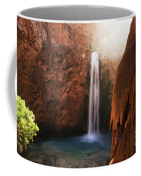 Mooney Falls Coffee Mug featuring the photograph Mooney Falls Grand Canyon 1 by Bob Christopher