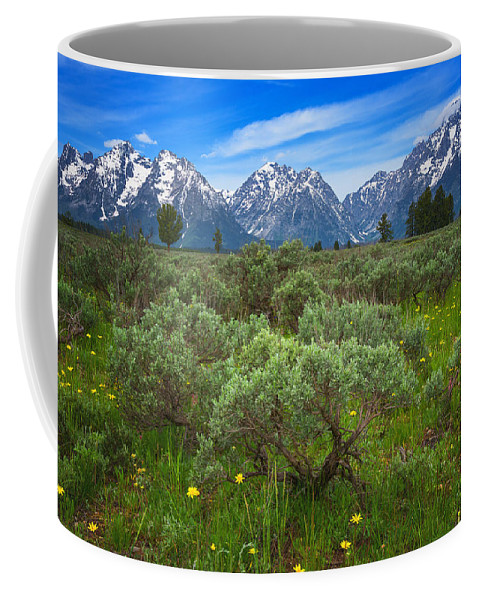 Grand Tetons Coffee Mug featuring the photograph Moran Meadows by Darren White