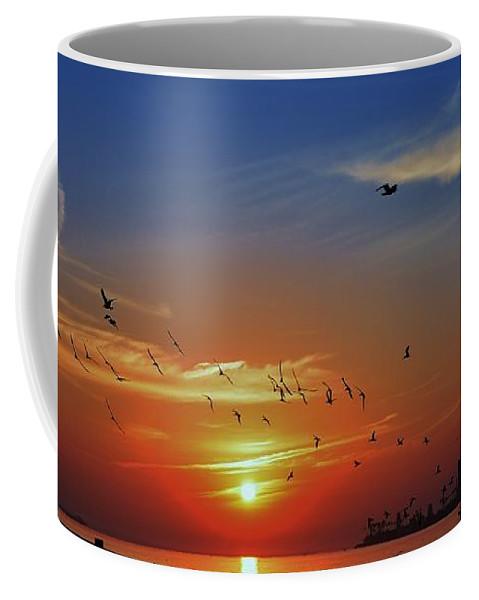 Sunrise. Birds Coffee Mug featuring the photograph Morning Active by John R Williams