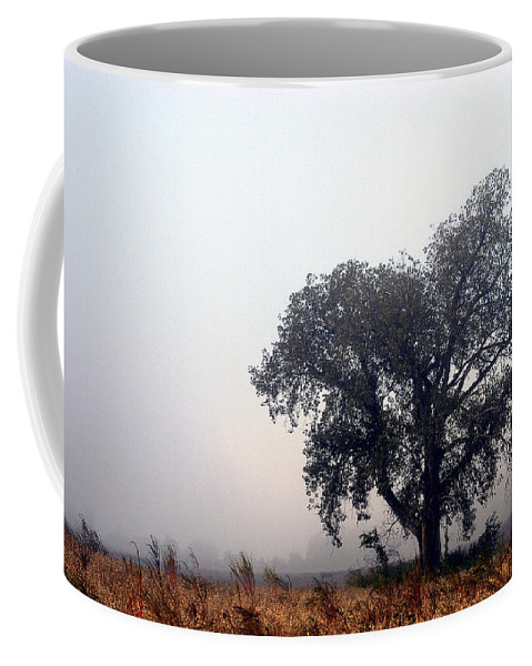 Fog Coffee Mug featuring the photograph Morning Fog - The Delta by D'Arcy Evans