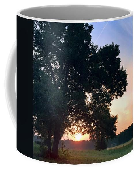 Tree Coffee Mug featuring the photograph morning glory 16AUG15 by Greg Joens