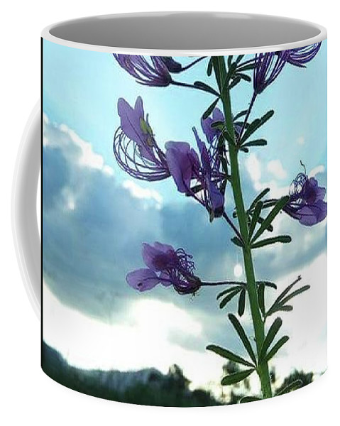 Flower Coffee Mug featuring the photograph Morning Glory by Elizabeth Doto