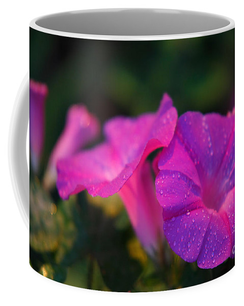 Flora Coffee Mug featuring the photograph Morning Glory by Gaspar Avila