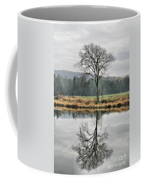 Reflections Coffee Mug featuring the photograph Morning Haze And Reflections by Deborah Benoit