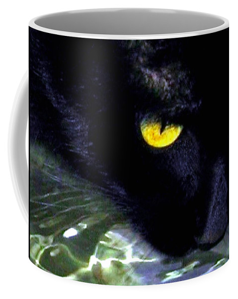 Cat Coffee Mug featuring the photograph Morning Laps by Will Borden
