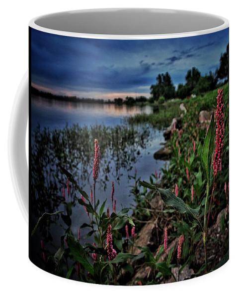 Lake Overholser Coffee Mug featuring the photograph Morning Light Along The Shore by Buck Buchanan