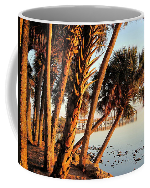 Photography Coffee Mug featuring the photograph Morning Lights by Susanne Van Hulst