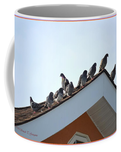 Pigeon Coffee Mug featuring the photograph Morning Meet by Sonali Gangane