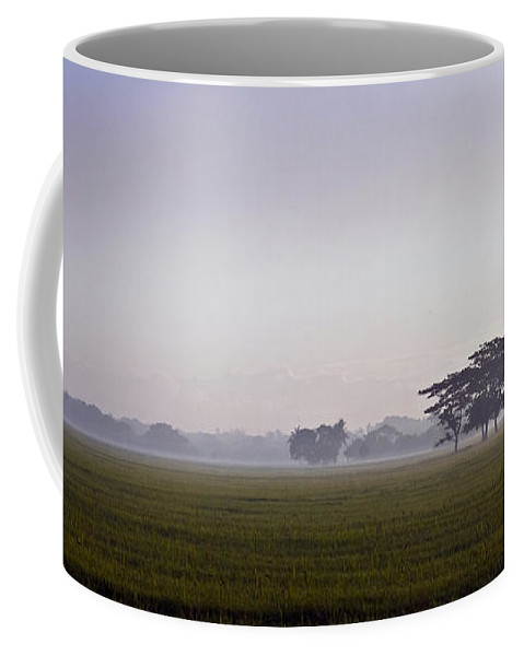 Nature Coffee Mug featuring the photograph Morning Mist by George Cabig