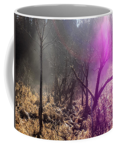 Mist Coffee Mug featuring the photograph Morning Misty Flare by William Tasker