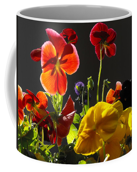 Morning Pansy's Coffee Mug featuring the photograph Morning Pansy's by Lori Mahaffey