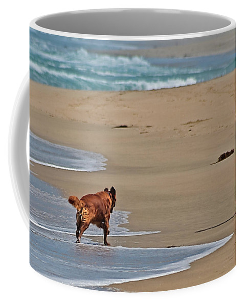 Dog Coffee Mug featuring the photograph Morning Run by Jay Billings