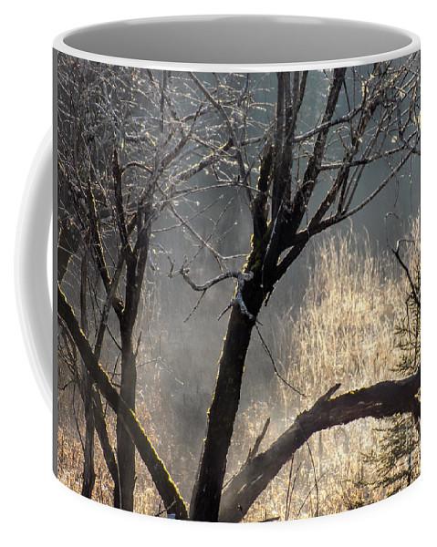 Mist Coffee Mug featuring the photograph Morning Sunlight Mist by William Tasker