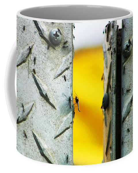 Mosquiros Coffee Mug featuring the photograph Mosquitos by Anthony Jones