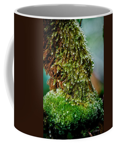 Hawaii Coffee Mug featuring the photograph Moss by Christopher Holmes
