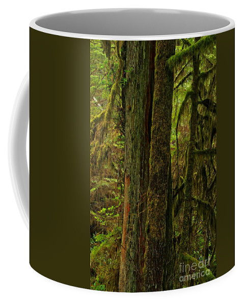 Pacific Rim Coffee Mug featuring the photograph Moss Covered Giant by Adam Jewell