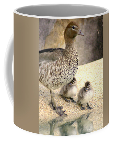 Animals Coffee Mug featuring the photograph Mother Of Twins by Holly Kempe