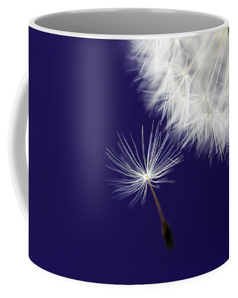 Dandelion Coffee Mug featuring the photograph Mother Ship by Rebecca Cozart