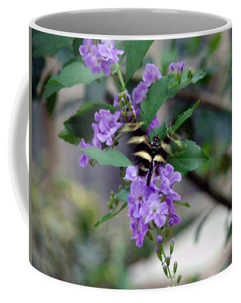 Butterfly Coffee Mug featuring the photograph Motion by Robert Meanor