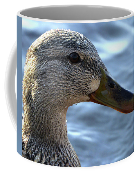 Ducks Coffee Mug featuring the photograph Mottled Duck Big Spring Park Crop by Lesa Fine