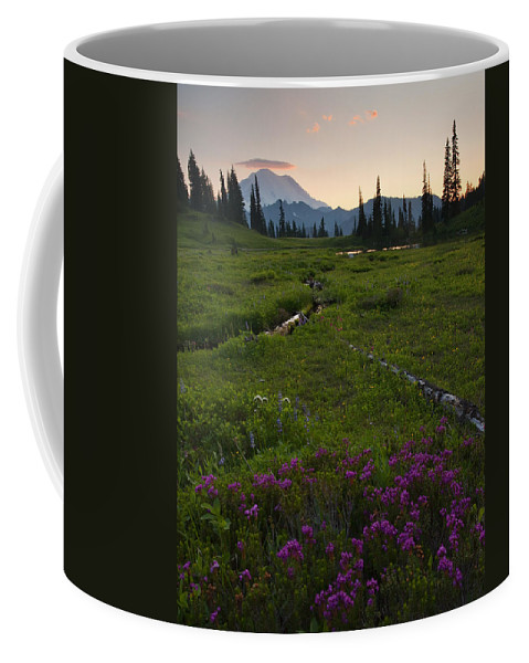 Rainier Coffee Mug featuring the photograph Mountain Heather Sunset by Mike Dawson