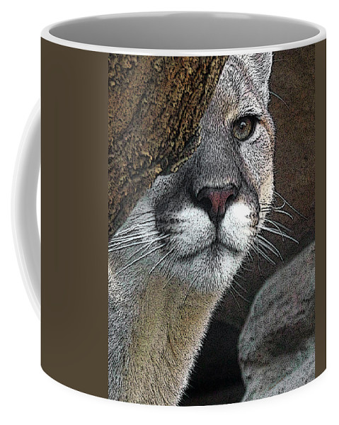 Big Cats Coffee Mug featuring the photograph Mountain Lion by Ernie Echols