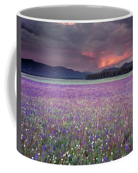 Idaho Scenics Coffee Mug featuring the photograph Mountain Meadow Purple by Leland D Howard