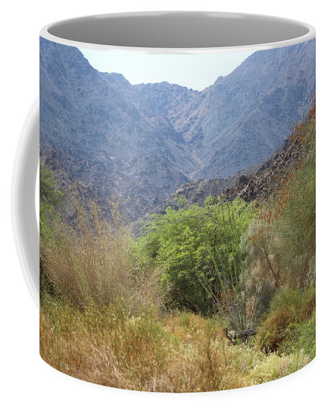 Palm Desert California Coffee Mug featuring the photograph Mountain Scene in Palm Desert by Colleen Cornelius
