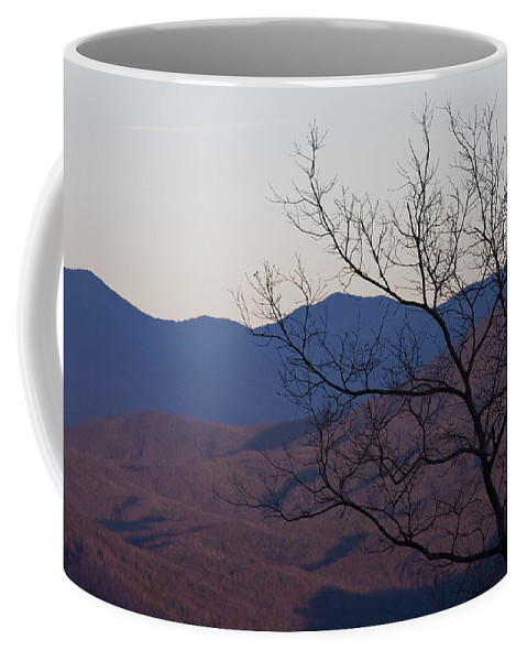 Tree Mountain Mountains Sun Sunset Sky Winter Smoky Park National Coffee Mug featuring the photograph Mountain Tree by Andrei Shliakhau
