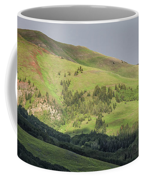 Crested Butte Coffee Mug featuring the photograph Mountain View From Gothic Road by Maria Struss