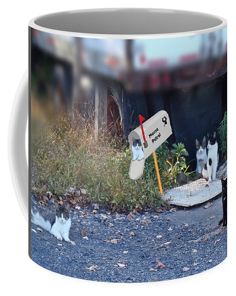 Cats Coffee Mug featuring the photograph Mouse Patrol by Mother Nature